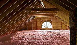 Attic Pest Control Insulation