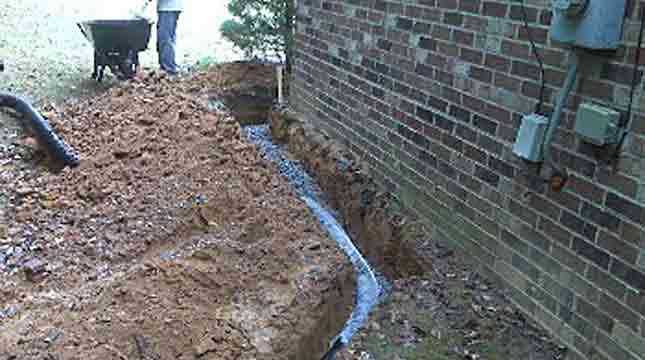French Drain Systems Design | Priority Pest Services
