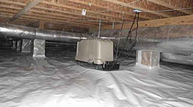 Vapor Barrier & Dehumidifier | Priority Pest Services
