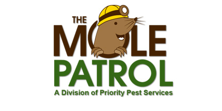 Virginia Beach Mole Removal