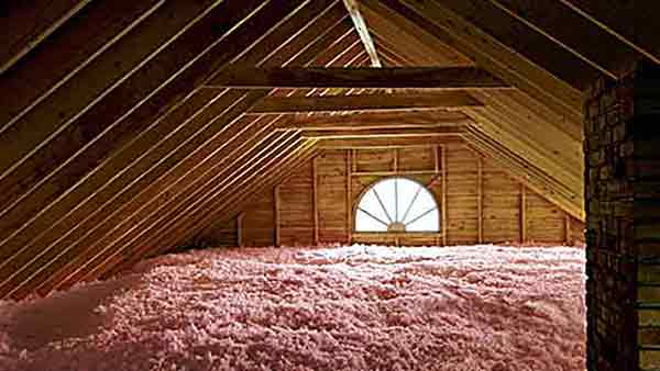Attic Insulation & Pest Control