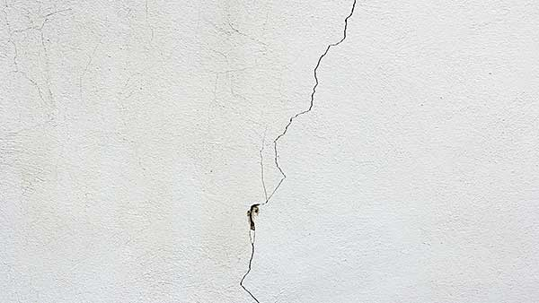 Image result for wall cracks termite