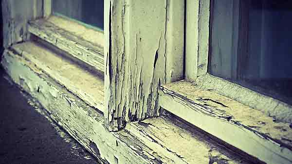 How To Seal Windows To Keep Pests Out