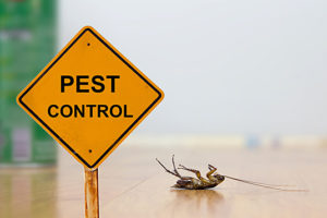 Pest Control Professionals Free Home Inspection